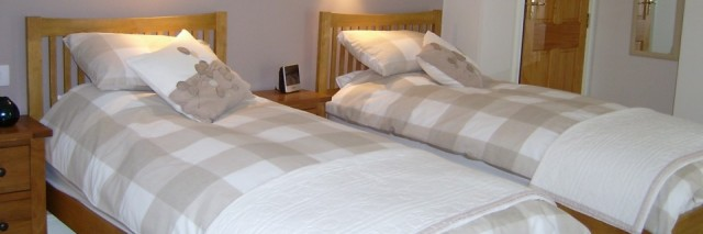 Melin Pandy bed and breakfast twin bedroom