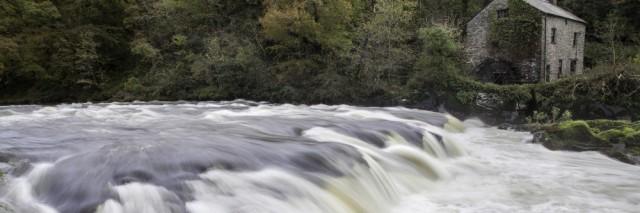 Cenarth Falls and Mill